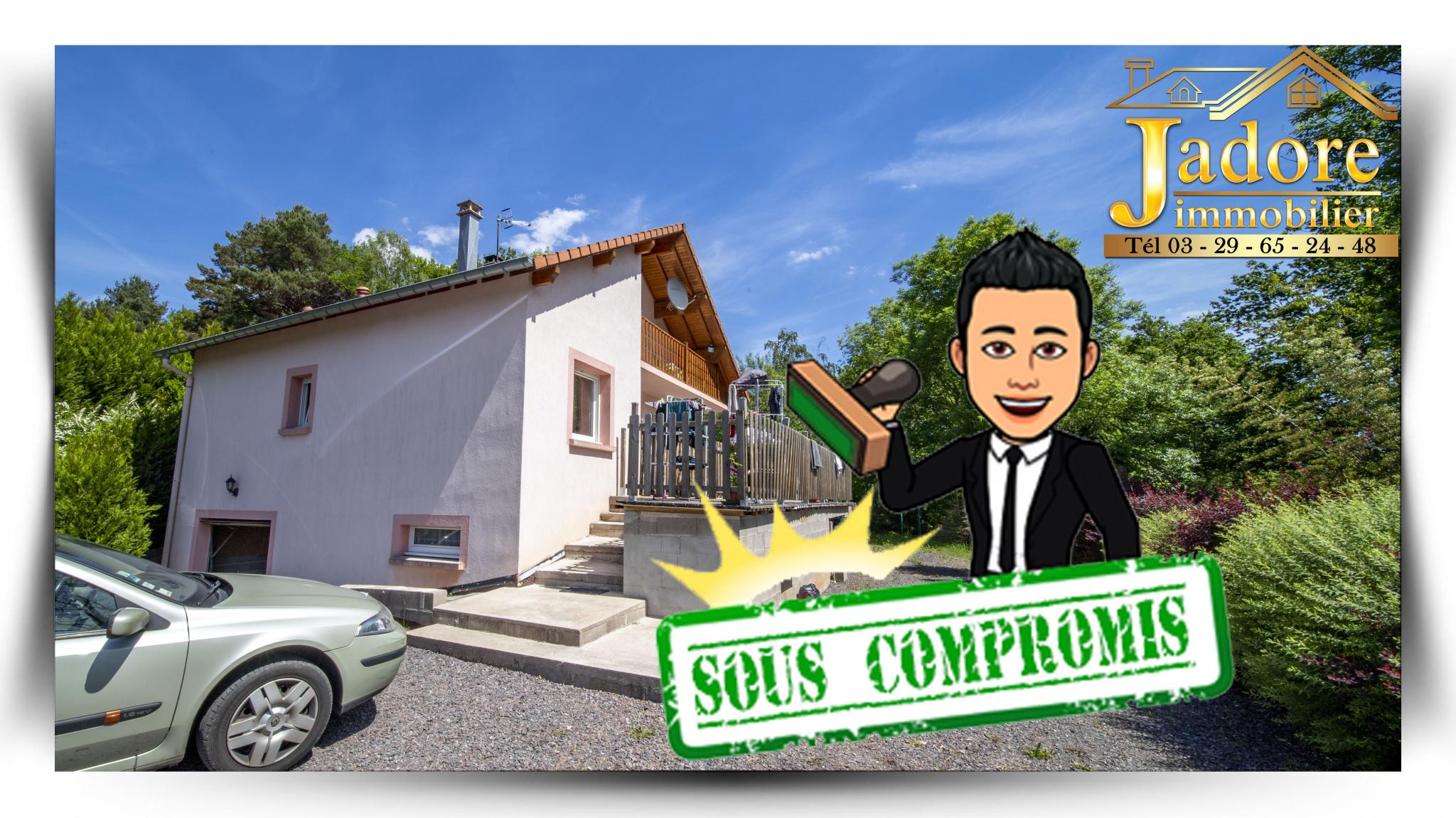 maison/villa à vendre st die des vosges